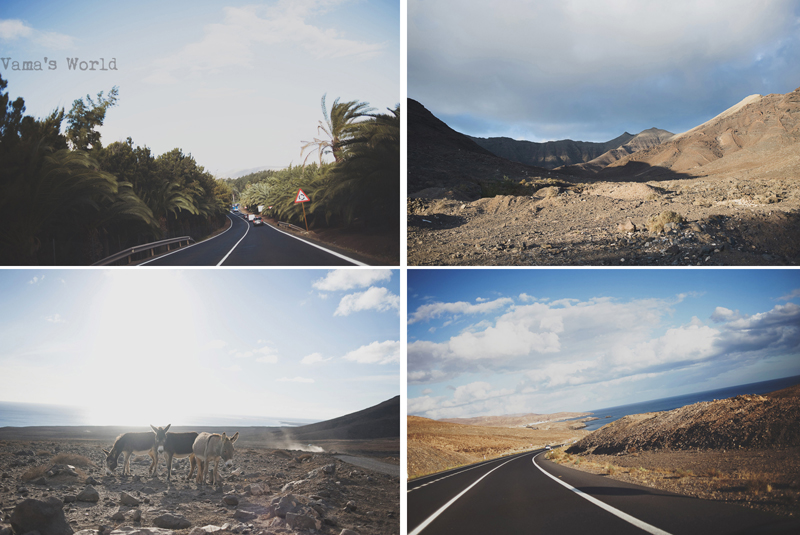 driving a car on fuerteventura